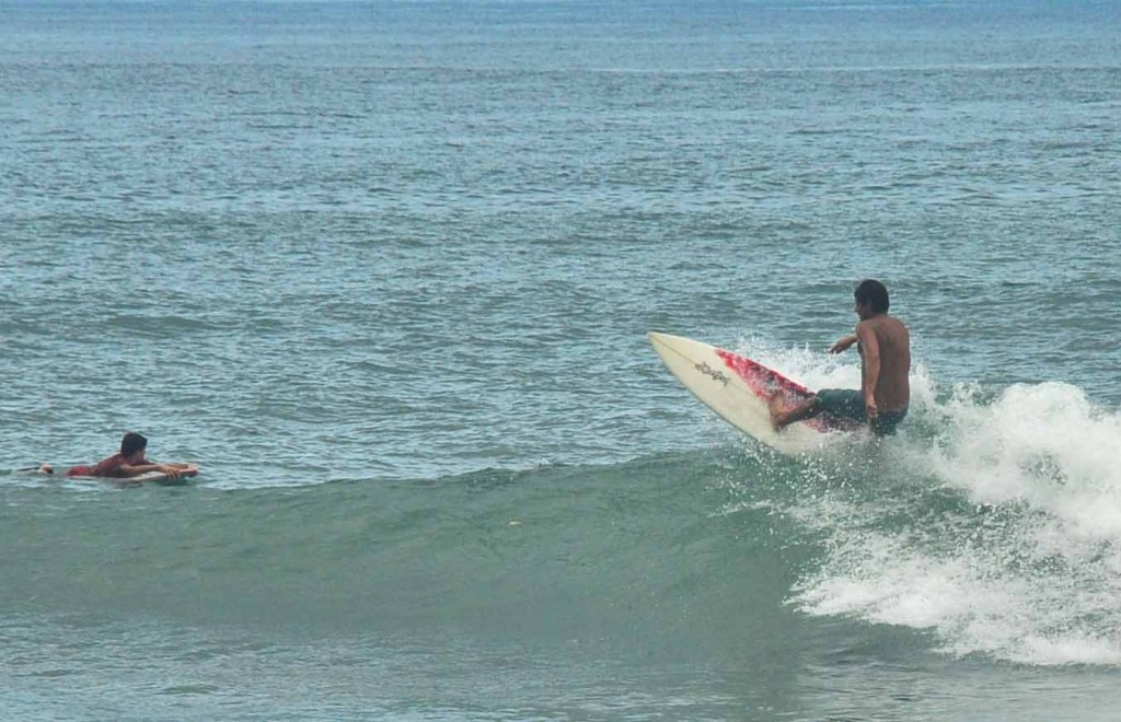 cutback surf burros puerto vallarta